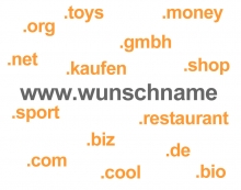 Was bringen die neuen Top Level Domains?